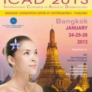 19-cover-en-icad-20131